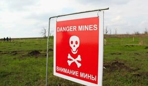 Стали известны имена и возраст детей, подорвавшихся на мине под оккупированной Горловкой