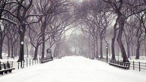 Снежно и морозы до -20: синоптик уточнил, когда в Украину придет зима и какой она будет