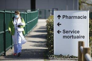 В Италии выздоровел нулевой пациент, с которого началась вспышка коронавируса в стране