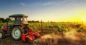 НБУ выбросил мелких фермеров с рынка земли