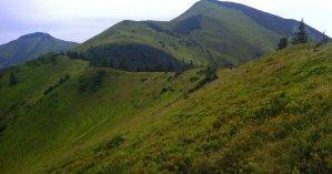 В Закарпатской области в горах от сердечного приступа умер мужчина