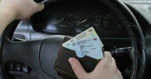 В МВД анонсировали запуск онлайн-сервиса по проверке подлинности водительских прав