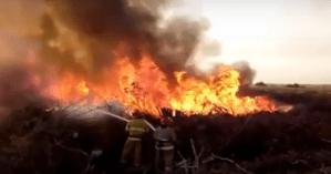 В Черкассах пожарные всю ночь тушили пожар возле зоопарка (видео)
