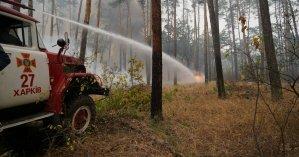 11 погибших и 150 эвакуированных: спасатели почти неделю борются с масштабными пожарами в Луганской области (фото и видео)